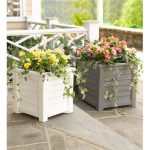 Beautiful Spring and Summer Containers for Your Garden