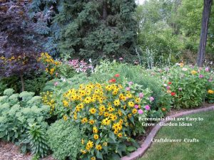 Perennials growing in the garden easy ways to grow flowers