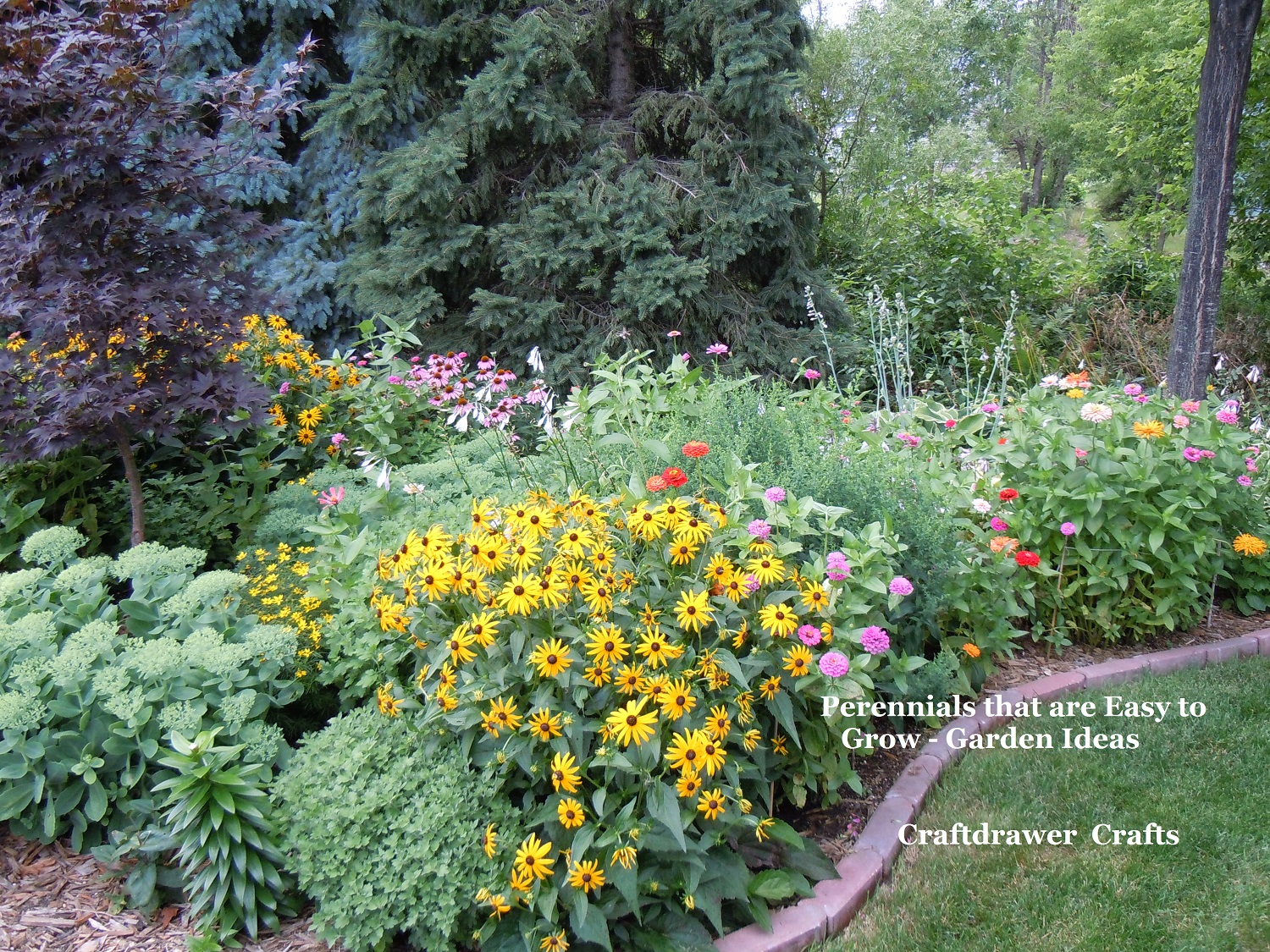 Perennials made easy how to create and grow amazing gardens for Easy to care for perennial flowers