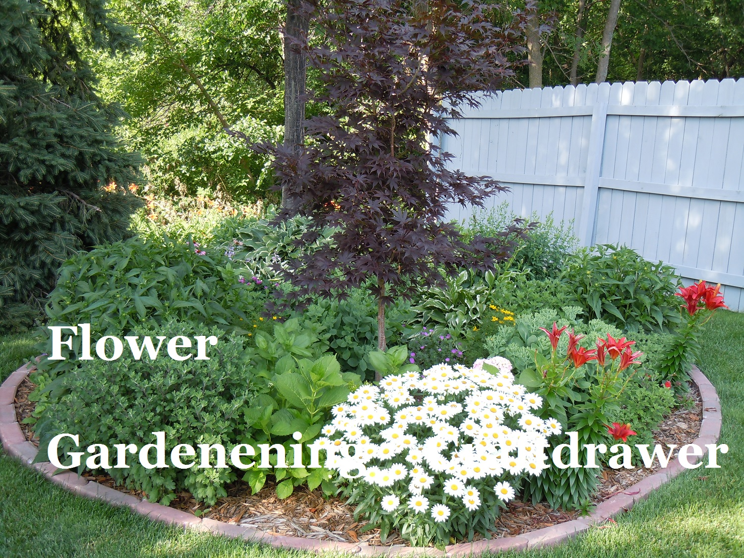 Planting your Garden for spring and summer