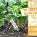 Farm Fresh Coupons: Organic Produce Delivered to Your Home